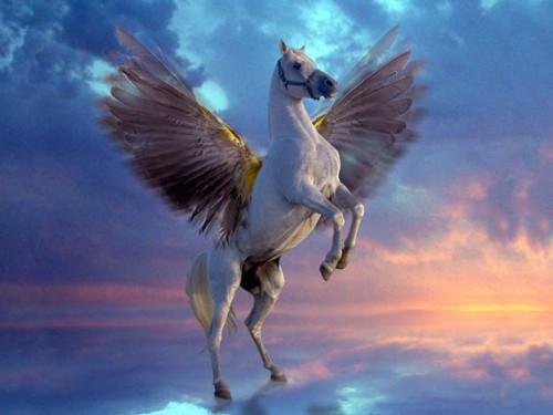 pegaso,mitologia greca,mitologia,miti,leggende,creature mitiche,creature leggendarie,bestie mitologiache,creature leggendarie,creature mitiche,greci,grecia,favole,cavallo alato,cavallo,ali,cavallo bianco.