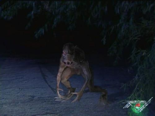 leggende,miti,creature,creature leggendarie,chupacabra,chupacabras,mostri,bestie,oscurità.