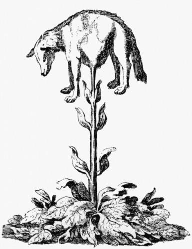 vegetable_lamb_lee_1887.jpg